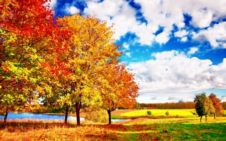 AUTUMN - leaf, falls, palette, river, autumn, enchanting nature, landscape, colors, sky, splendor, trees, bright, nature