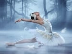 Beautiful Swan Ballerina