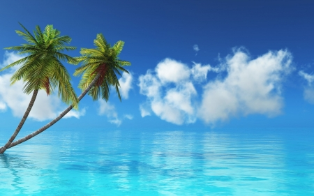 Tropical Island - Water, Palm trees, Sea, Blue, Nature
