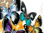 Lovely Butterflies