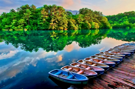 CLEAR REFLECTION - forest, boat, landscape, enchanting nature, sky, splendor, reflection, nature, lake