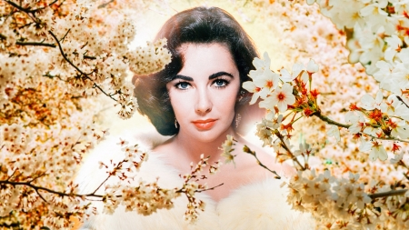 Liz Taylor - beauty, actress, woman, Liz Taylor, flower