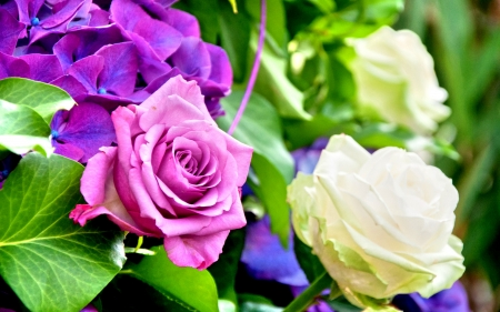 ROSE and HYDRANGEA for Alexandra