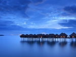 Bungalows in the Blue Sunset