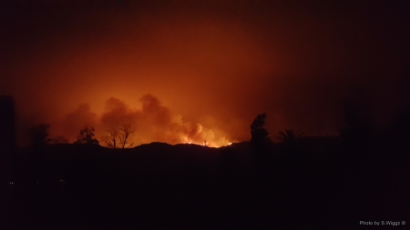 Thomas Fire,Ventura County, California - Trees, Ventura, Darkness, California, Flames, Smoke, Fire