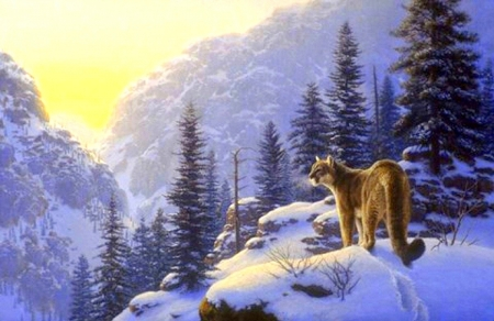 A Lot of Cat - love four seasons, attractions in dreams, cat, xmas and new year, winter, big wild cats, paintings, snow, mountains, wildlife, forests, animals