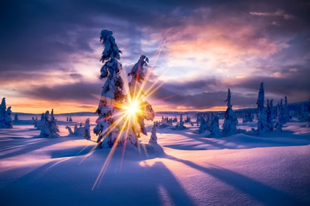 Winter Paradise Sunsets Amp Nature Background Wallpapers