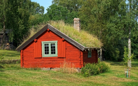 Red Hut - summer, hut, house, grass
