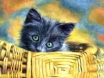 Basket Case - Cat F