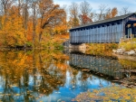 Autumn Covered Bridge