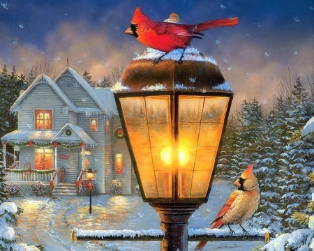 Winter Holidays - Christmas, holidays, houses, love four seasons, birds, attractions in dreams, lamppost, xmas and new year, winter, cardinals, paintings, snow