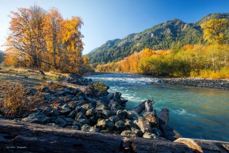 Autumn River - forest, rocks, autumn, stones, nature, river, trees