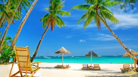 I'd rather be south of the equator for Christmas! - Beach, Palm trees, Tropics, Summer
