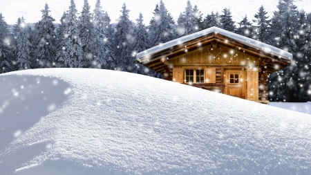 Snowed Inn - forest, vacation, house, holiday, cabin, trees, winter, snowing, snow, get away