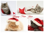 ~ ♥ღ Happy New Year  ღ♥ ~