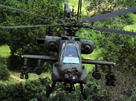 apache - grass, apache, jungle, helicopter, tree