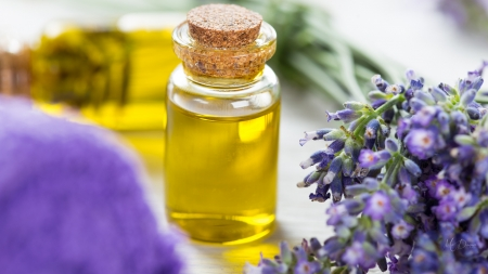 Fragrance of Lavender - oil, fragrant, flowers, spa, lavender, fragrance