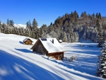 Winter chalets