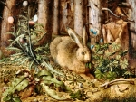 Hare in the Forest - Rabbit