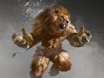 Lion fighter