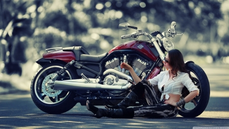 beauty and the beast - davidson, girl, harley, motorcycle