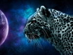 Space Leopard