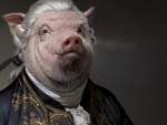 Lord Pig