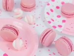 Bubble And Sweet Pinkalicious Macarons