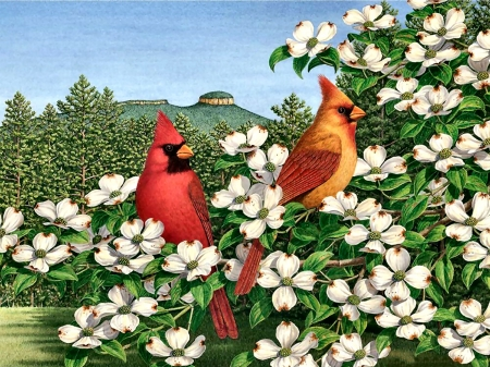 Carolina Calling - Birds F - art, dogwood blooms, songbirds, beautiful, illustration, artwork, animal, cardinals, bird, avian, painting, wide screen, wildlife, nature