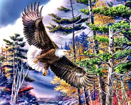 Boundary Water - Eagle - art, beautiful, illustration, artwork, animal, bird, avian, painting, wide screen, wildlife, nature, raptor