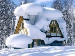 Snow In Canada And House