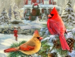 Holiday Cardinals Retreat