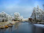 Small winter river