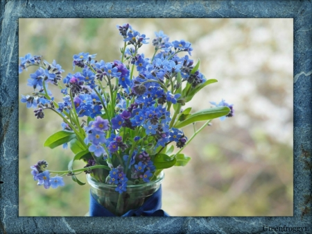 FOR GET ME NOT FLOWERS - BLUE, PRETTY, FLOWERS, FRAMED