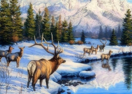 Teton Winter Range - holidays, love four seasons, attractions in dreams, deer, xmas and new year, winter, paintings, snow, mountains, forests, animals, rivers