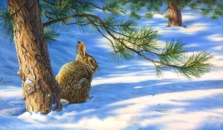 Winters Canopy - rabbit, holidays, love four seasons, attractions in dreams, xmas and new year, pine tree, winter, paintings, snow, forests, animals