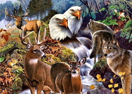 Forest Neighbors - Wildlife - chipmunk, eagles, art, elks, beautiful, illustration, artwork, deer, animal, painting, wide screen, wildlife, flowers, nature, wolves