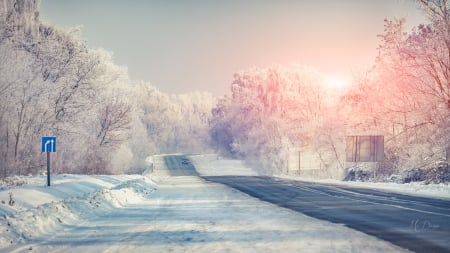 Winter Sunrise - drive, trees, sky, winter, snow, car, sunrise, road, Firefox Persona theme