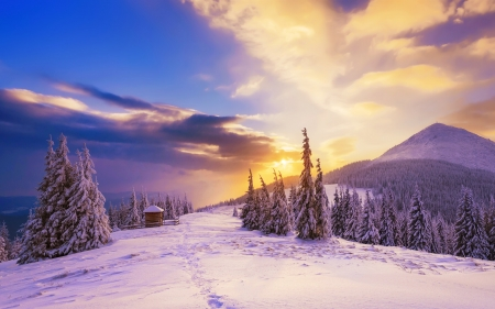 Winter Sunset Sunsets Nature Background Wallpapers On Desktop