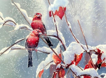 winter birds - art, paintings, snow, birds, nature, animals, winter