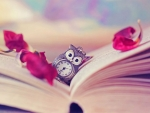 Book with an owl