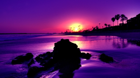 Amazing Purple Sunset