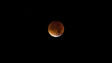 Blood Moon - blood moon, blue moon, sky, stars, night, moon