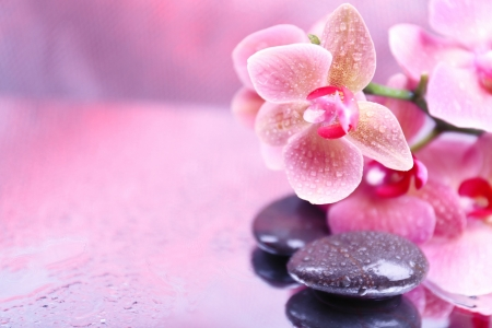 relaxing spa mind teasers abstract background wallpapers on
