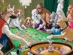 dogs paly roulette