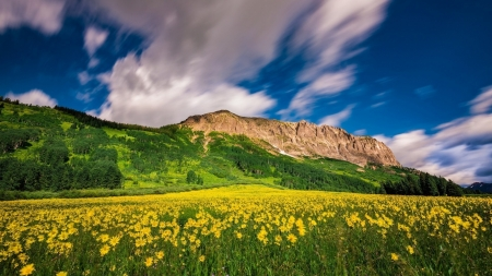 Mountain View - landscape, mountain, nature, hills, meadow, clouds