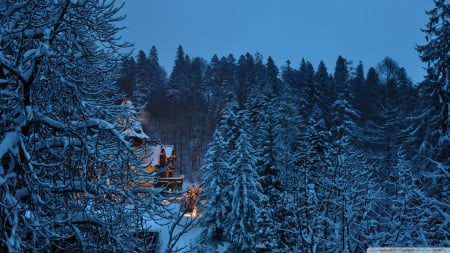 Peles Castle,Romania - winter, nature, snow, castle, forest, trees