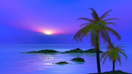 Blue sunset - rocks, pretty, waves, sunset, sea, palms, beach, nature, blue