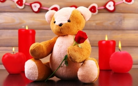 Teddy Bear with Love - valentines, red, holiday, love four seasons, hearts, candles, red rose, love, teddy bear with love, beloved valentines, teddy bear