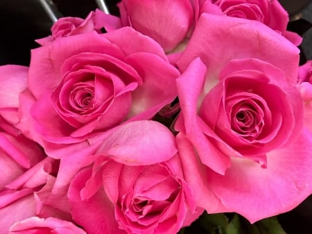 Happy Valentines Day - Flowers & Nature Background Wallpapers on ...
